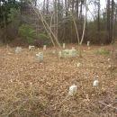 Rouse-Harrison Cemetery