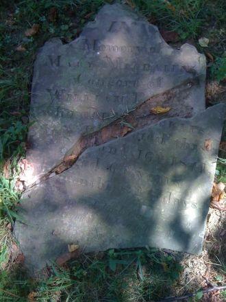 Mary Magdalene Debolt Eckles, Pennsylvania