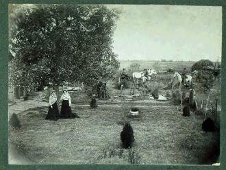 Pearl & Alta Homan, 1903