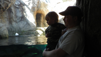 Dad And Son At The Zoo