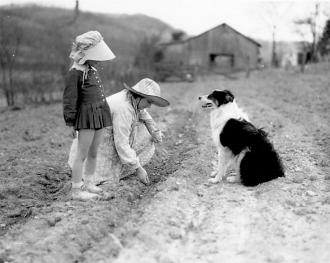 Corley and Ruby Reynolds, TN