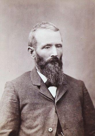 Henry Harrison Post
