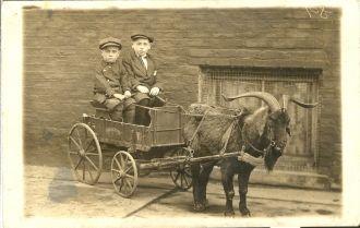 Joseph & Isadore Schub, c1912 IL