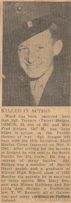 Terence Stelges obituary