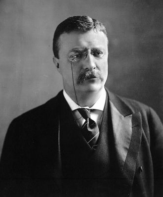 A photo of Theodore Roosevelt Jr.