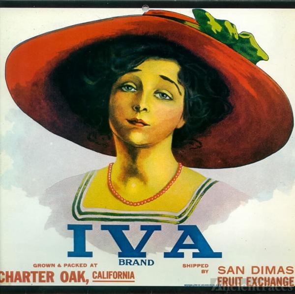Iva Lacey, Iva Brand Citrus Label