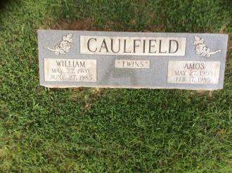 Amos and William Caulfield Gravesite