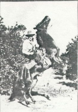 Lewis Lacey and his horse