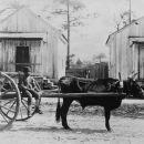 Georgia Rural Scene circa 1890