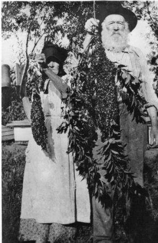 Barbara Ann & Anderson Gibson, Nebraska