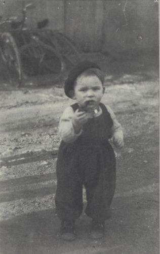 Holocaust - Albert Cogan