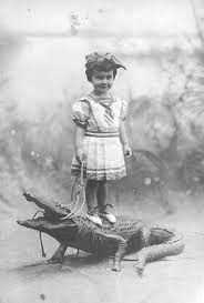 Gator? Croc?