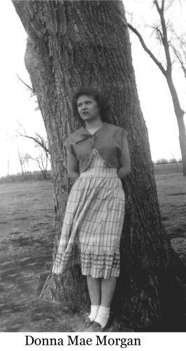 A photo of Donna Mae (Morgan) Wolner