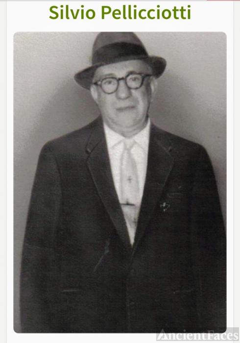 Silvio Pellicciotti