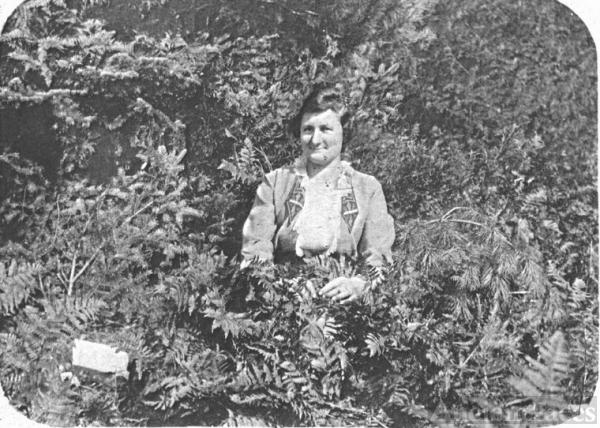 A Woman amidst Ferns