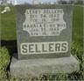 Leroy & Mahala (Moore) Sellers