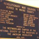 Revolutionary War Soldiers