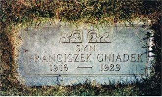 Franciszek  Gniadek Grave Marker, IL