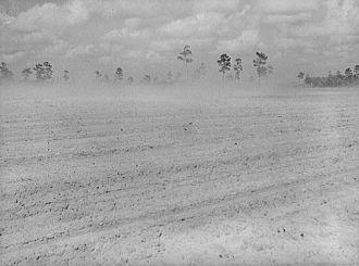 Dust Bowl, Florida 1939