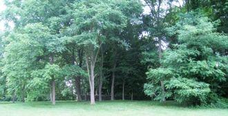 Barnett Cemetery near Paris, Kentucky