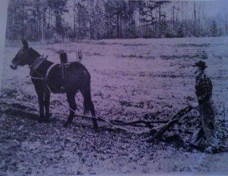 Idelet Grant plowing