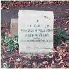 May Collier gravesite