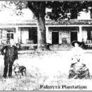 Palmyra Plantation