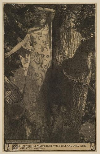 'So haunted at moonlight' 1902