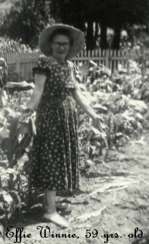 Effie Winnie