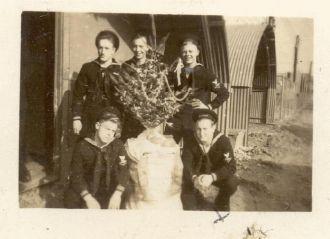 Five Sailors & A Tree