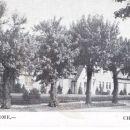 St. Ann's nursing home,  IL