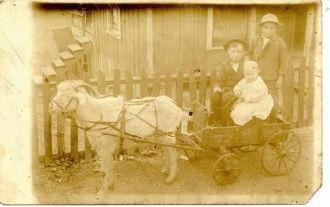 Children with goatcart