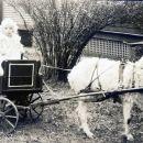 Betty Maddux in a Goat Cart