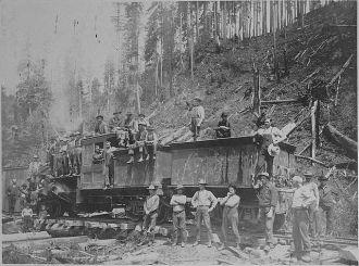 Logging Picture #3