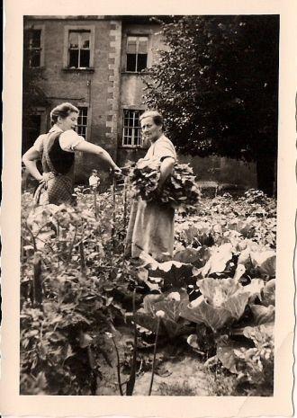 Charlotte & Minna (Sacher) Pulst