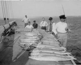 Day's fishing, FL