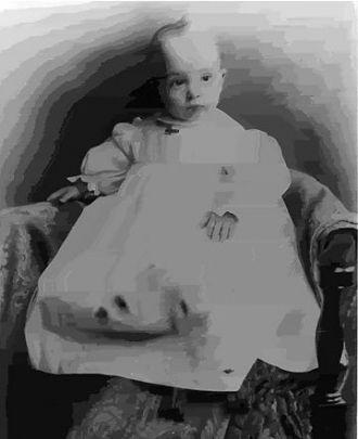 Ralph William Howland, Massachusetts 1900
