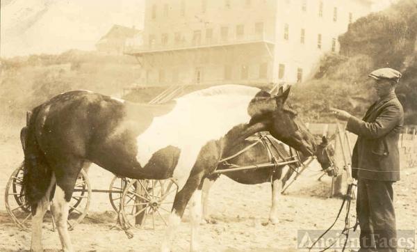 George McCrady w'horses