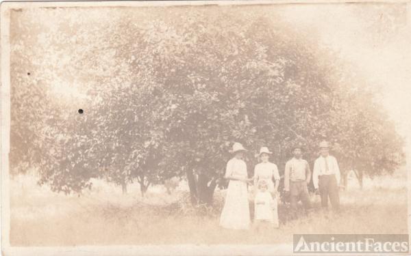 Unknown group next to orange trees
