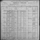 Marion County Illinois Census