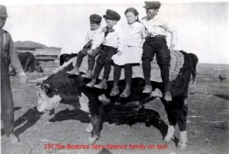 Spry-Spence family