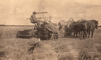 Theodore Wilhelm Roos Farming