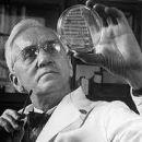 Penicillin - Alexander Fleming
