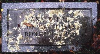 A photo of Asa  White