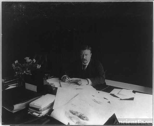 [Theodore Roosevelt, seated at desk, looking up]