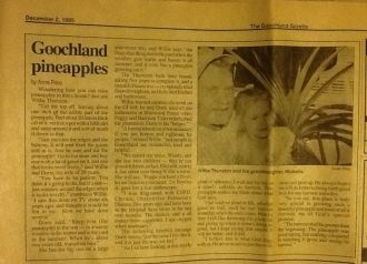 Willie Howard Thurston article