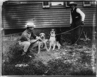 President Roosevelt's dogs