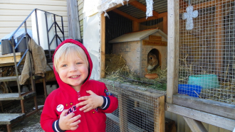 Wyatt And The Bunny
